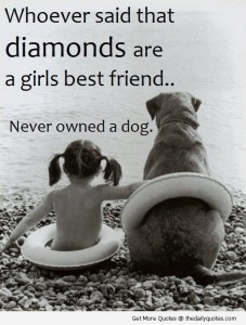 diamonds-are-girls-bestfriends-never-owned-a-dog-cute-quote-picture